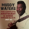 Muddy Waters twist